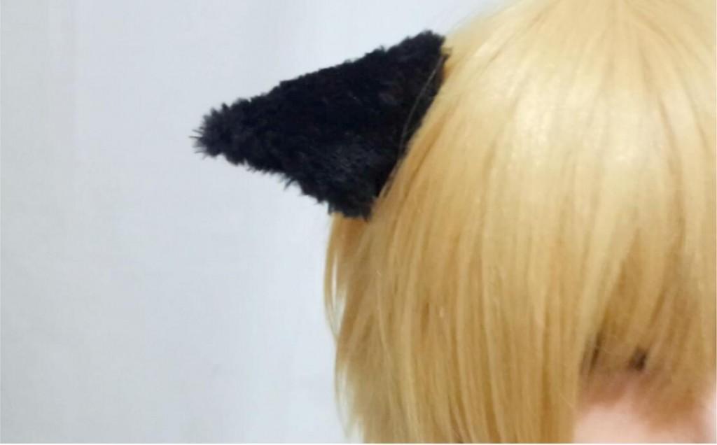 Triangular ears & Drooping cylindrical ears9