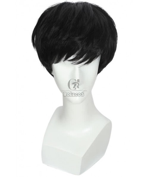 25cm Short Fashion Cosplay Wigs Black Straight Hair For Men