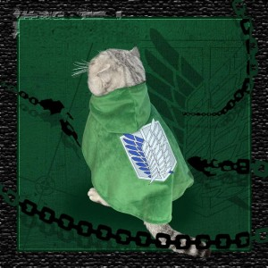 Attack on Titan Scout Regiment Cat Cosplay Costume